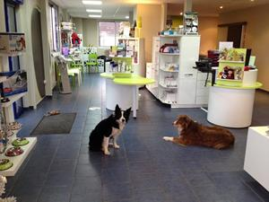 Agencement clinique vétérinaire Beauvais